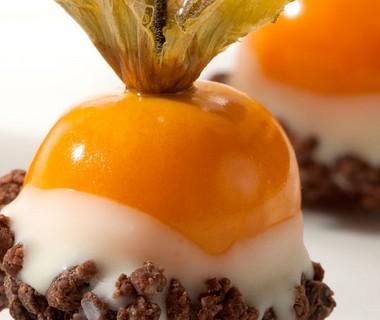 Physalis bessen gedoopt in chocolade