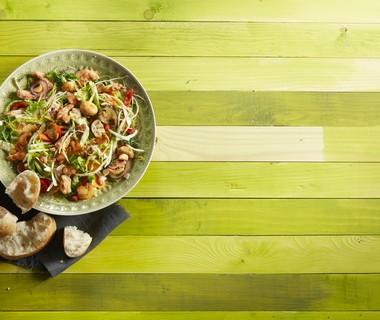 Warme salade met kool en kip