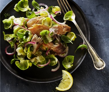 Salade van gemarineerde spruitjes met makreel en groene kruiden
