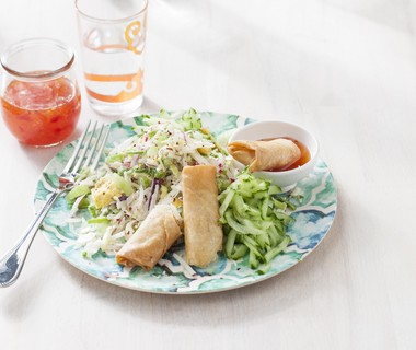 Rauwkostsalade met Vietnamese loempia's